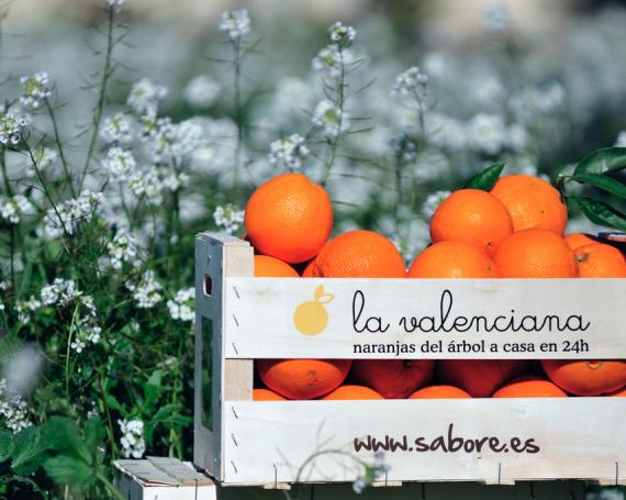 Naranjas La Valenciana